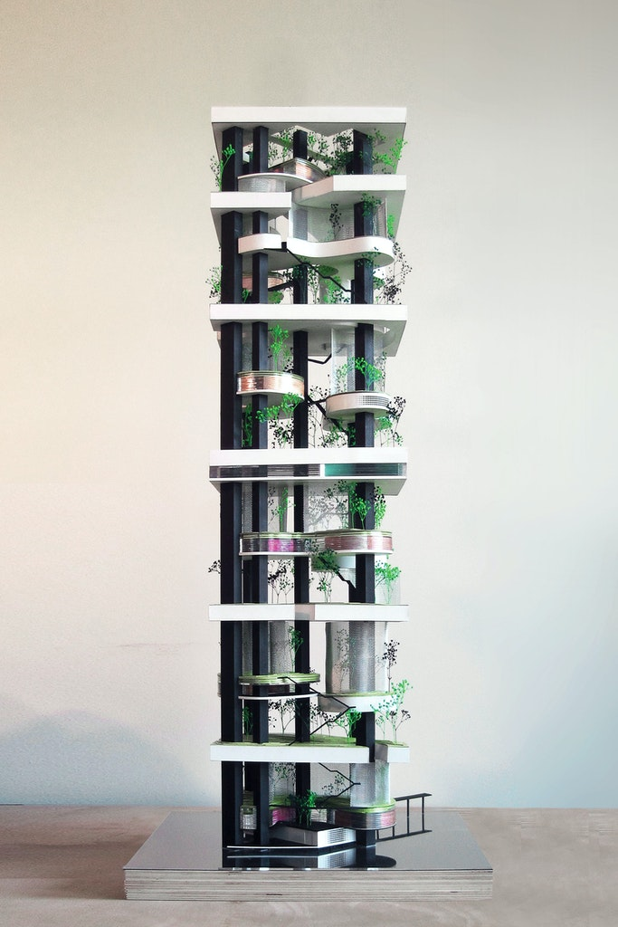 Vertical Zoo. Final competition model
