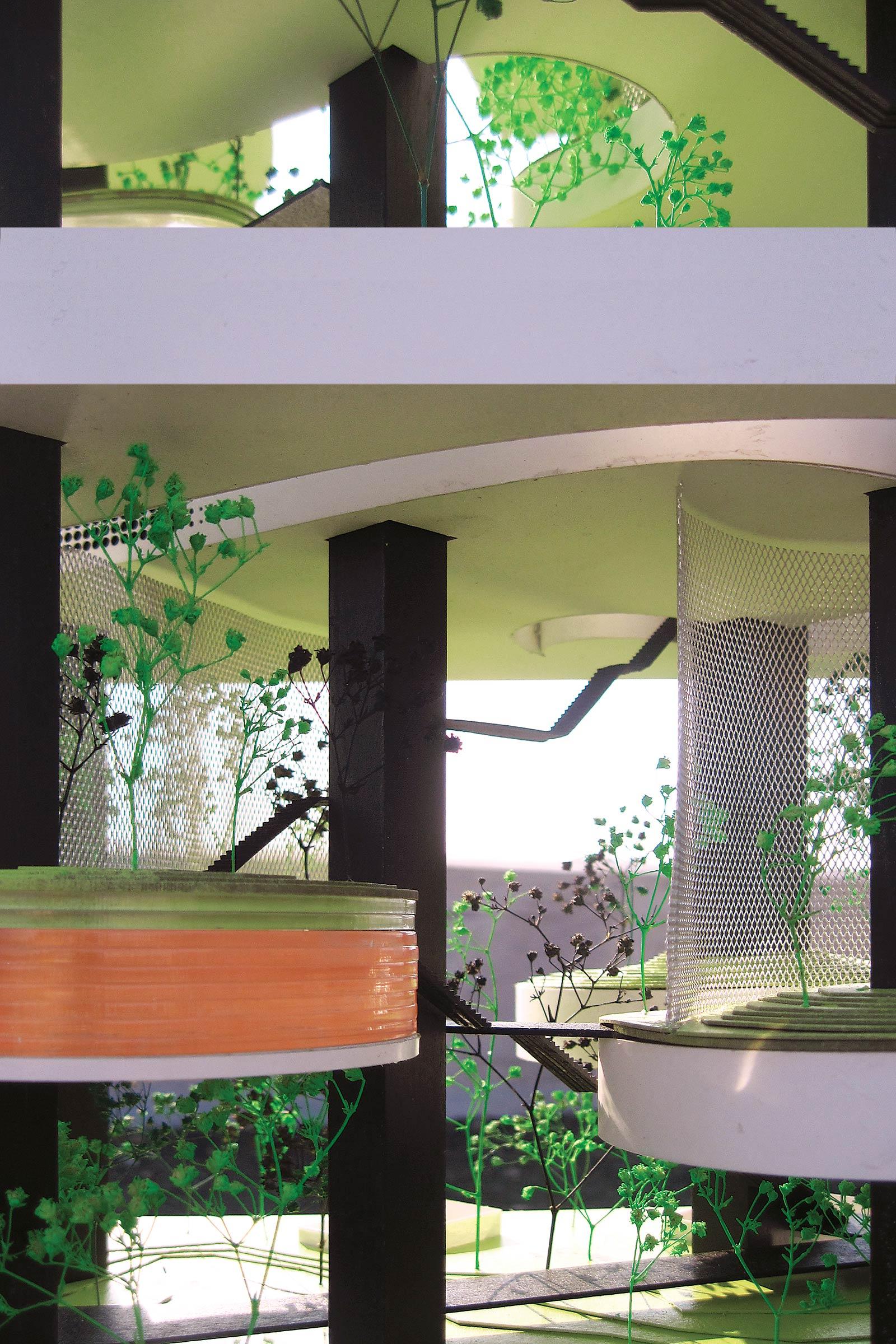 Vertical Zoo. Detail, mid level floors